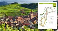 ALSACE :  SlowUp sur la route des vins, 5ème éd.